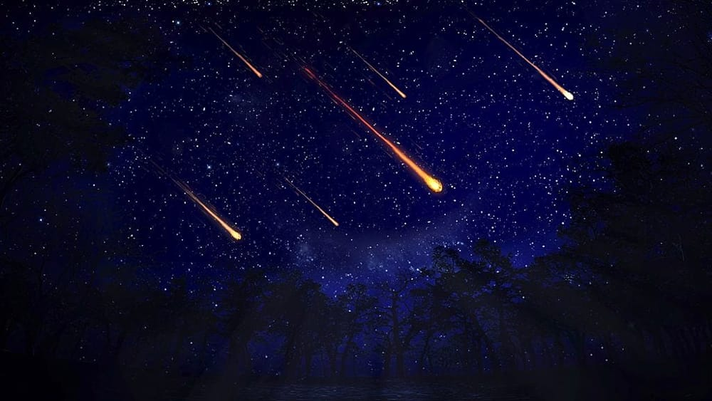 stelle stelline